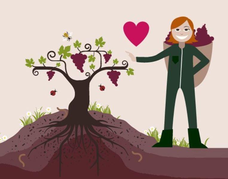 vins biologiques et naturels mariage Vendée artisanal