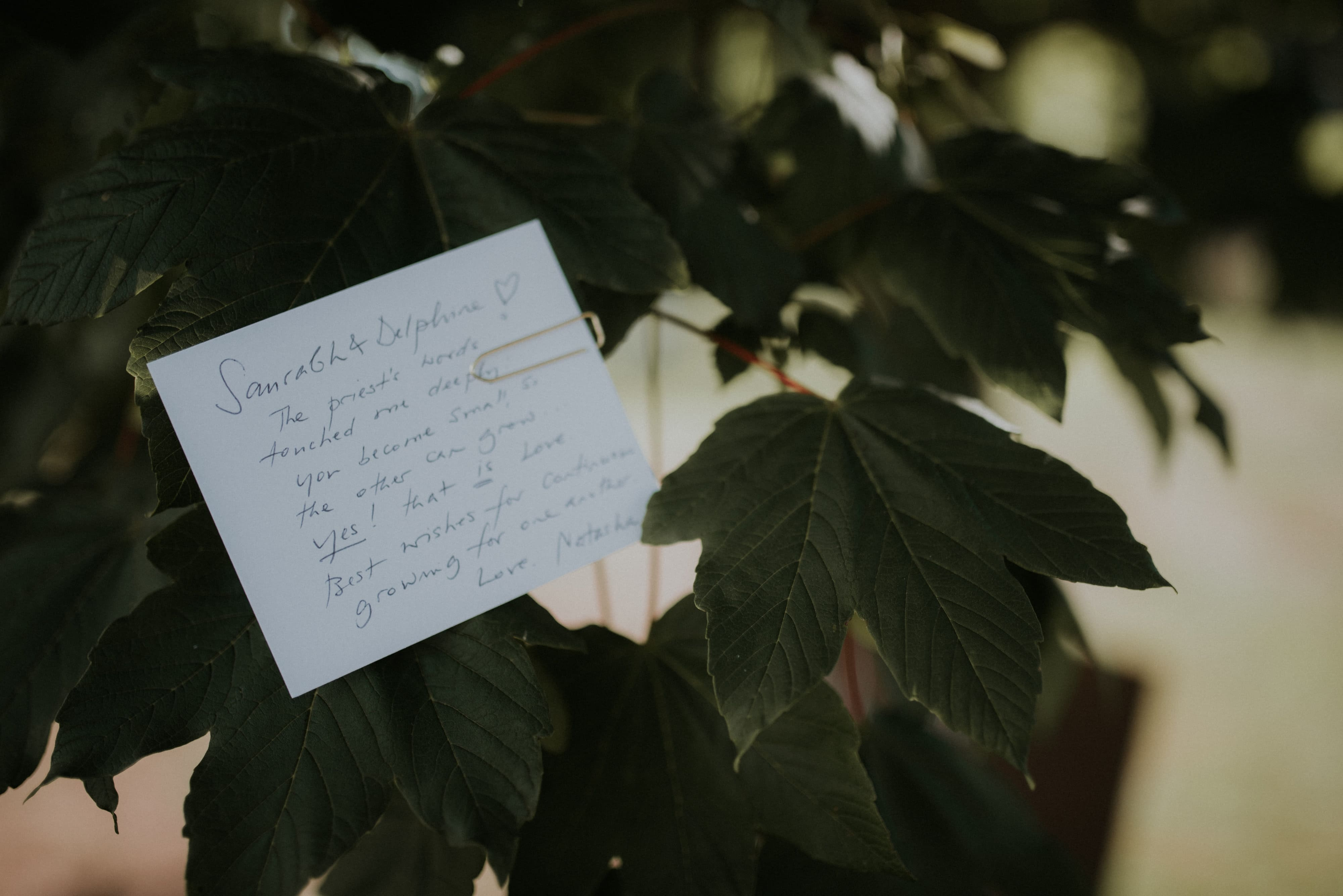 arbre a voeux mariage