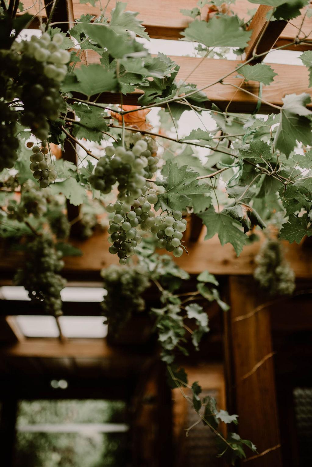 mariage decoration florale autour du vin